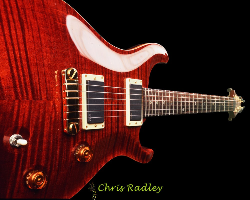 paul reed smith custom 22 tortoiseshell