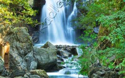 Neidong Waterfall Wulai Taiwan 內洞瀑布